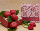 Pomme Soaps